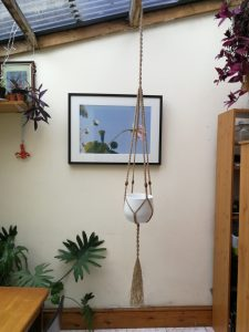 Commission Extra Large Plant Hanger