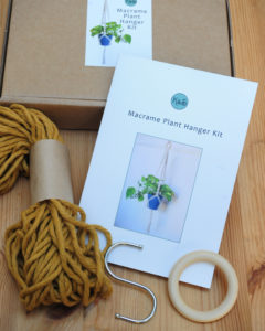 Yellow Plant Hanger Kit