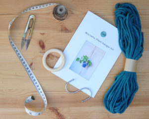 Blue Plant Hanger Kit